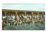 Bathing Pool, Coronado, San Diego, California Posters
