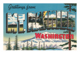Greetings from Mt. Rainier, Washington Poster