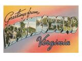 Greetings from Waynesboro, Virginia Posters