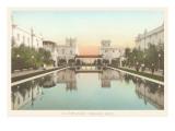 Lily Pond, Balboa Park, San Diego, California Prints