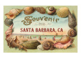 Sea Shells, Souvenir from Santa Barbara, California Posters