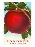 Apple, Edmonds, Washington Prints