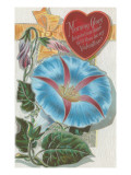 Vintage Morning Glory Valentine Posters