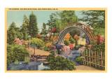 Teegarten, Golden Gate-Park, San Francisco, Kalifornien Poster