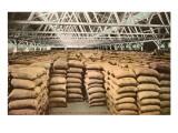 Largest Wheat Warehouse, Tacoma, Washington Posters