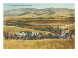 Washington Harvest Scene, Horse-Drawn Thresher Prints