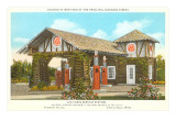 Log Cabin Service Station Print