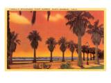 Cabrillo Boulevard, Santa Barbara, California Posters