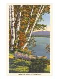 Birches, La Crosse, Wisconsin Prints