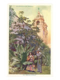 Tropical Garden in Balboa Park, San Diego, California Posters