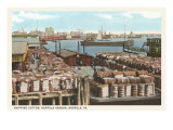 Cotton Bales on Docks, Norfolk, Virginia Posters