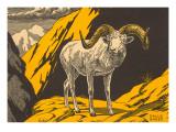 Woodcut of Dalls Sheep Schilderijen