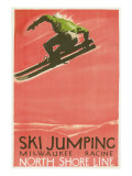 Ski Jumping Poster Prints