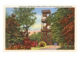 Eagle Bluff Observation Tower, Wisconsin Plakát
