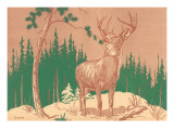 Deer in Forest Prints