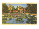 Lily Pond, Balboa Park, San Diego, California Posters