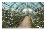 Conservatory, Mitchell Park, Milwaukee, Wisconsin Print