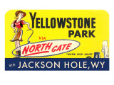 Yellowstone Park Via the North Gate Prints