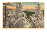 Winter in the Great Smoky Mountains Affiches