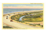 Highway 101 in Southern California, Torrey Pines Prints