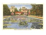 Lily Pond, Balboa Park, San Diego, California Posters