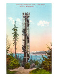 Gunther's Observation Tree, Seattle, Washington Posters