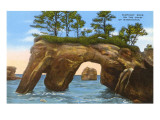 Elephant Rock, Washington Coast Art