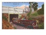 Zoo Choo, Mill Mountain, Roanoke, Virginia Prints