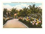 Mission Cliff Gardens, San Diego, California Print