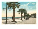 Boulevard entlang dem Strand, Santa Barbara, Kalifornien Poster