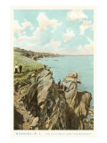 Cliff Walk, Newport, Rhode Island Prints