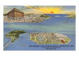 Plan of International Exposition, San Francisco, California Print