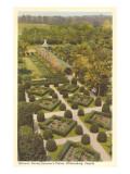 Governor's Palace Gardens, Williamsburg, Virginia Prints