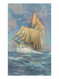 Brigantine Sailing Ship Prints