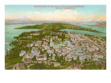 Aerial View of Exposition, Seattle, Washington Posters