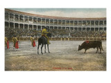 Picador in Bullfight, Spain Posters