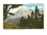 Mt. Rainier, Washington Posters