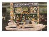 Ye Olde Curiosity Shop, Seattle, Washington Prints