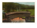 Humpback Bridge, Covington, Virginia Prints