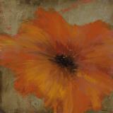Colourful Flowers III Print by  Bridges