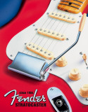 Fender - Strat since 1954 - Metal Tabela