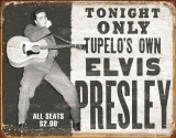 Elvis - Tupelo's Own Plaque en métal