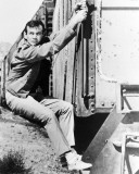 David Janssen - The Fugitive Photographie