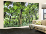 View of Vegetation in Bali Botanical Gardens, Bali, Indonesia Wall Mural  Large