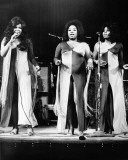 The Staple Singers Photo