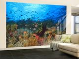 Schooling Anthias Fish, Wetar Island, Banda Sea, Indonesia Wall Mural – Large by Stuart Westmorland