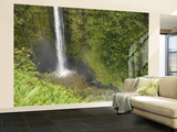 Akaka Falls, Hamakua Coast, Hawaii, USA Wall Mural – Large by Savanah Stewart