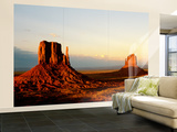 Monument Valley in Late Afternoon Wall Mural – Large by Douglas Steakley