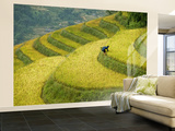Black H&#39;Mong Woman in Rice Field Terraces Near Tafen Village Wall Mural  Large by Diana Mayfield