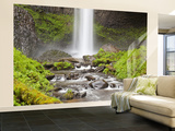 Latourell Falls, Columbia River Gorge, Oregon, USA Wall Mural – Large by Jamie & Judy Wild